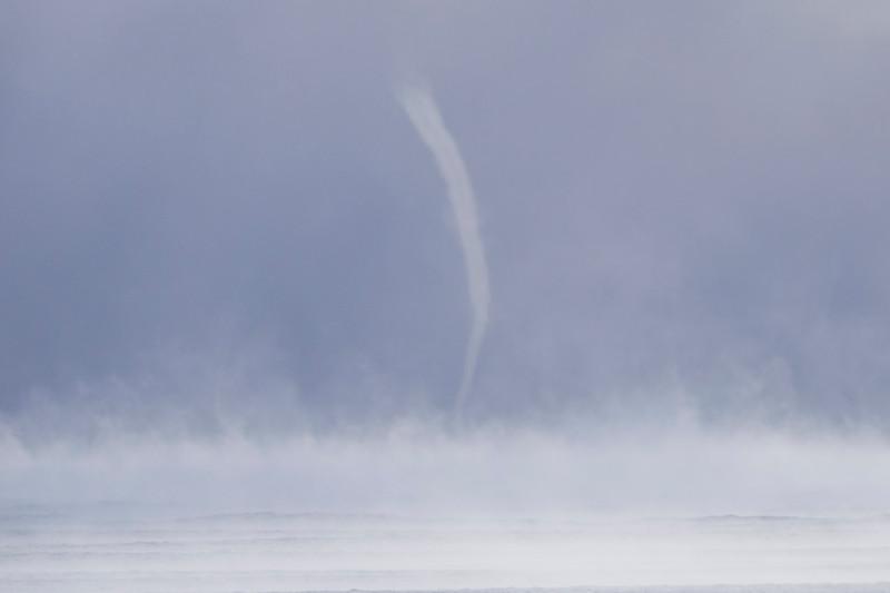 Sea Smoke 006