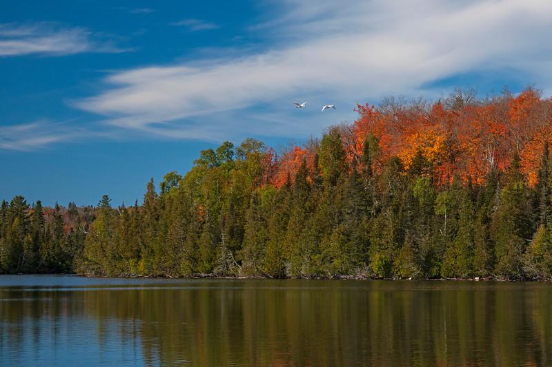 Nine Mile Lake 002