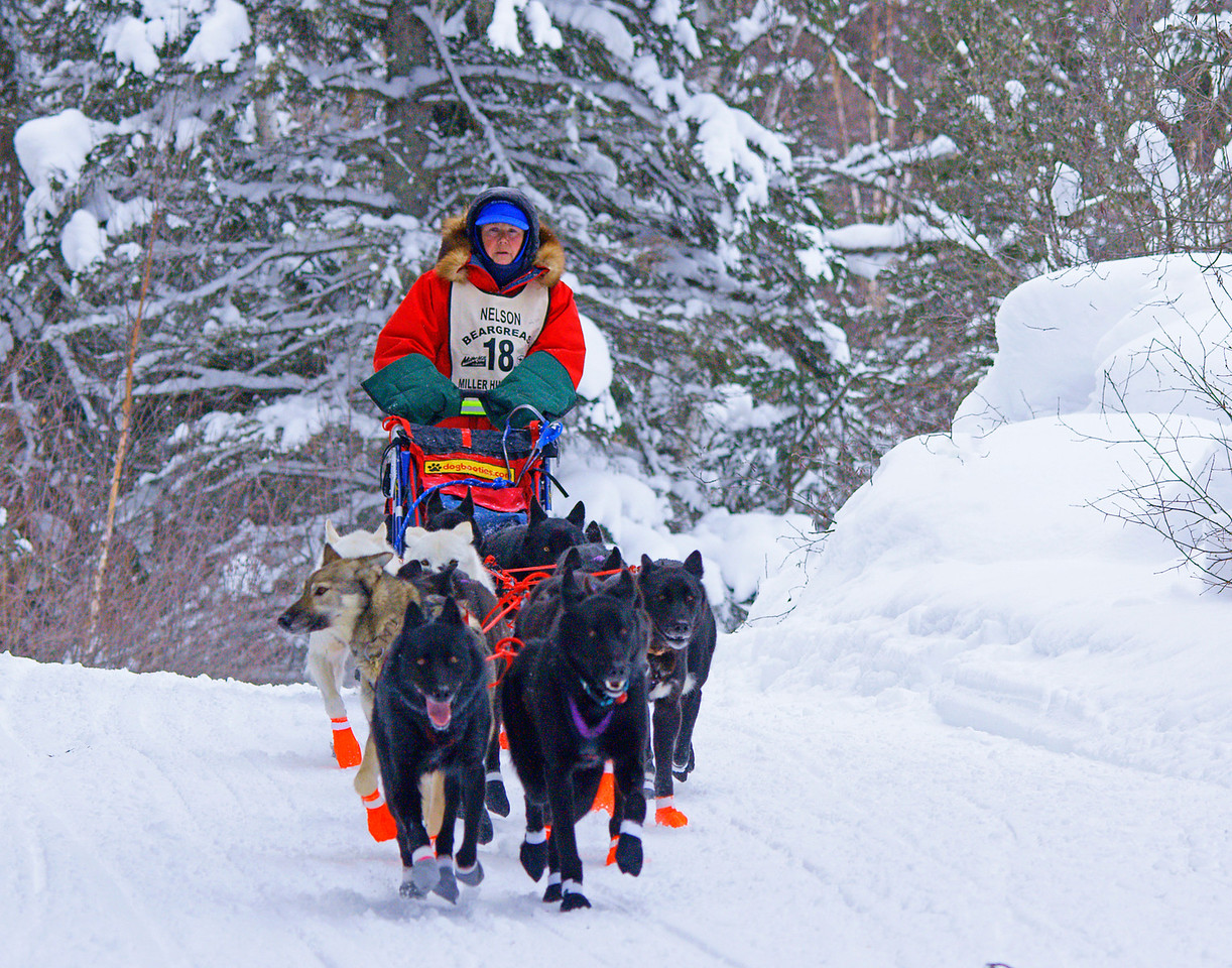 John Beargrease Sled Dog Marathon 002<br /> <br /> The John Beargrease Sled Dog Marathon took place last week.  Several teams of excited dogs raced 390 miles from Duluth to Grand Marais, up the Gunflint Trail and then back to Duluth.