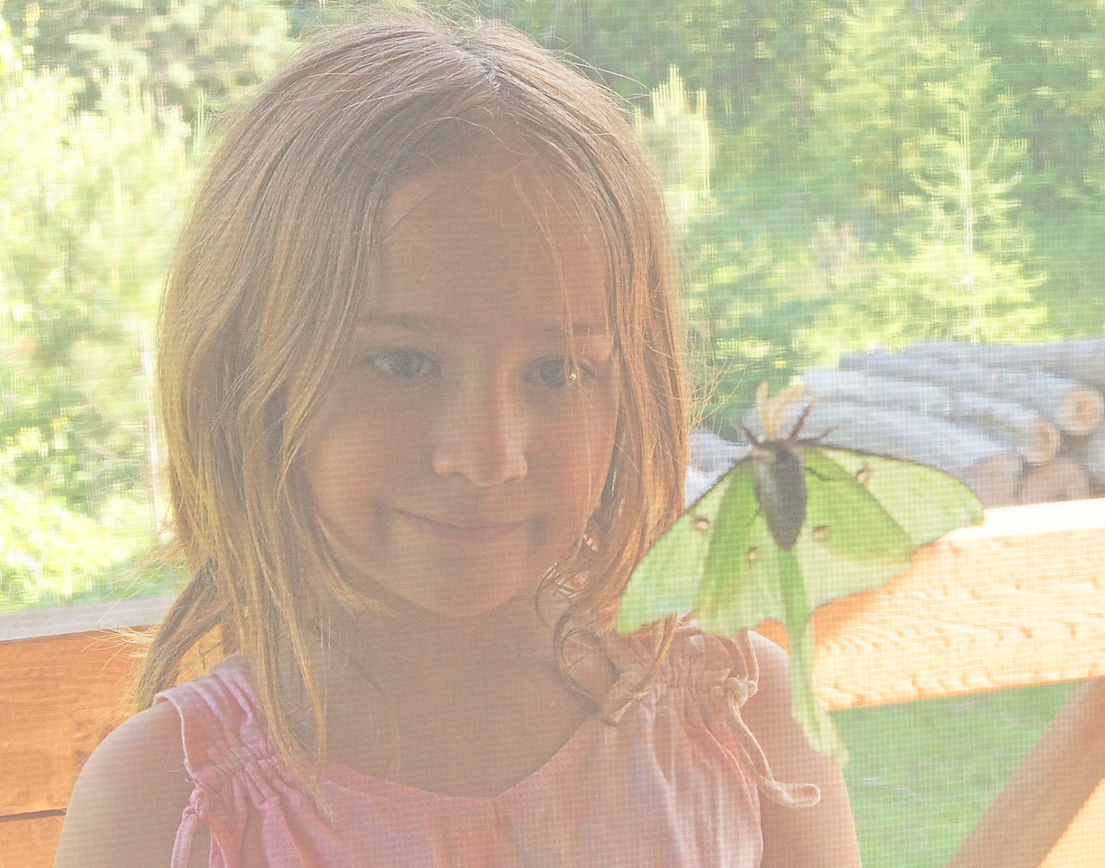 Jessie and Luna Moth<br /> <br /> Luna moths have a short life span living from three to six days. They have no mouth parts and live on the food already stored up in their fat little bodies from when they were caterpillars.  This isn't the first time Ruby, Kate or Jessie have held a Luna moth. Since their moms are educators and love the outdoors their kids get to have many interesting outdoor experiences.