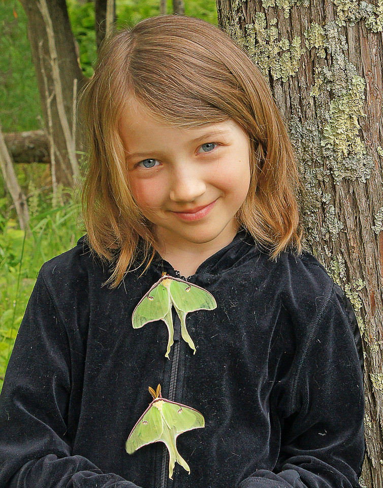 Kate and Luna Moths<br /> <br /> One morning we found five Luna moths.