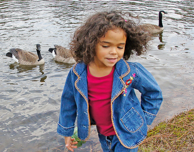 Addie<br /> <br /> We just returned from spending Thanksgiving with family in Atlanta, Georgia. We had a great Thanksgiving dinner and many memories were made outdoors. We visited a state park, the Atlanta Zoo, the botanical gardens, and went for several hikes around the ponds in their sub-division.  Our granddaughter, Addie, loves the outdoors and is always on the watch for the local wildlife like geese or cardinals