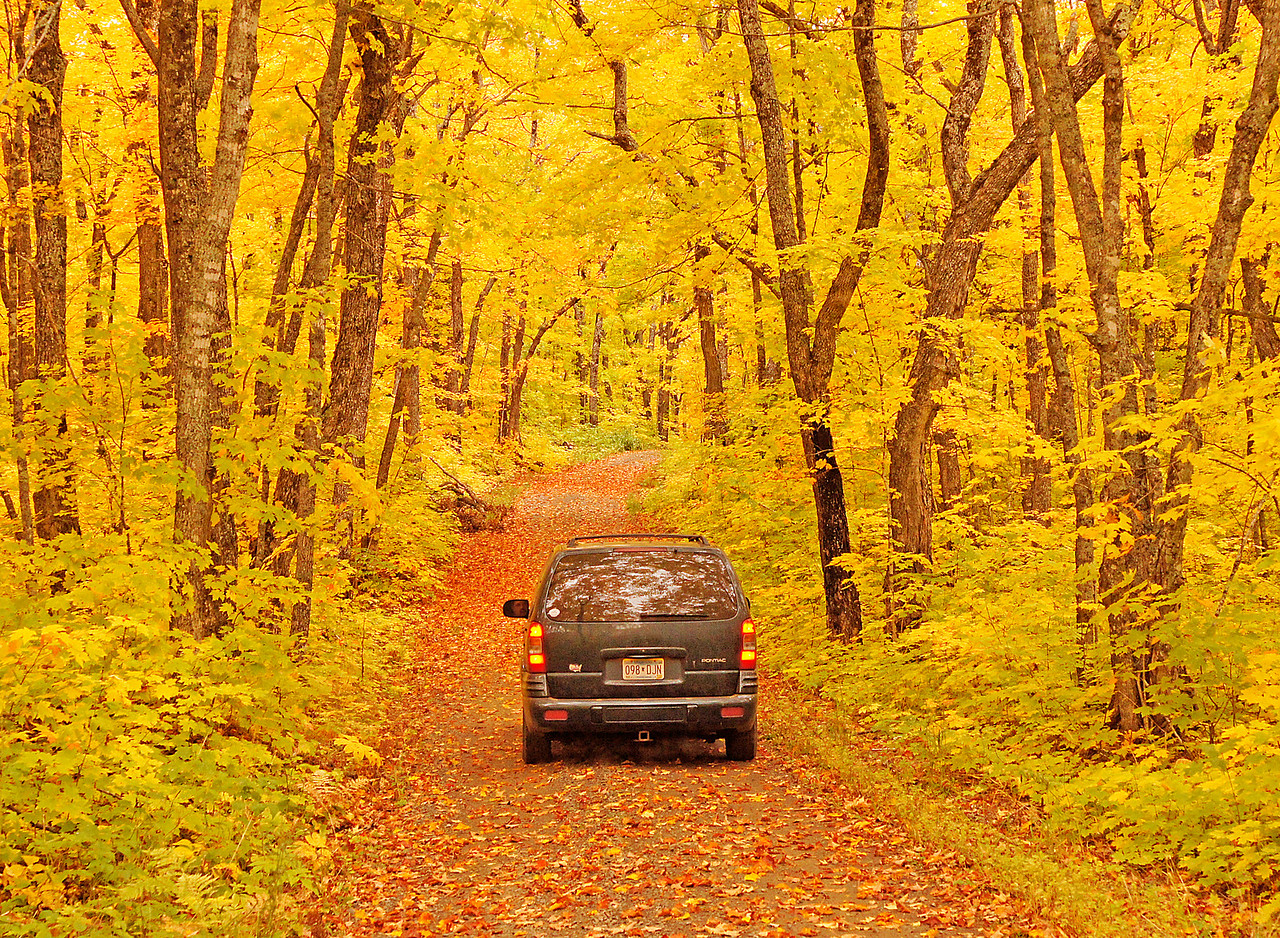 Rengo Road Grand Portage 001<br /> <br /> Some of the roads are completely covered with a canopy of colored leaves giving the feeling of driving through a tunnel of fall color. Fall is one of the best times of the year and I consider it a privilege to get out and enjoy the sights and smells of autumn.
