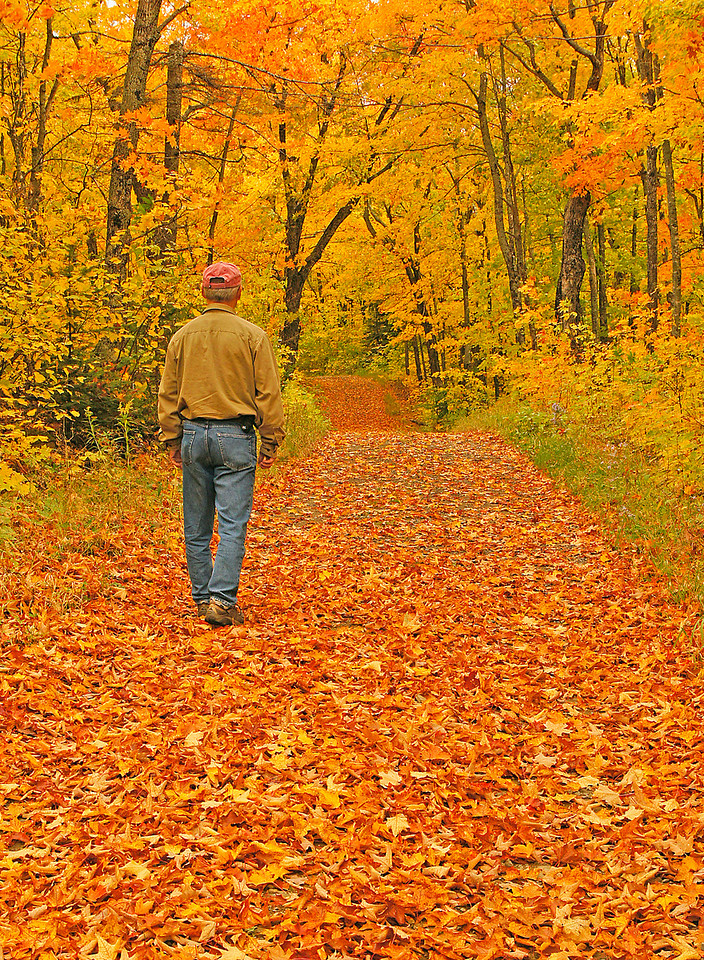 "Rengo Road Grand Portage 003<br /> <br /> There is nothing like getting outdoors in the fall, feeling the crunch of the leaves under your feet and surrounding yourself with the results of God's paintbrush.<br /> <br /> This is also the time of year to see moose. If you want to see the story in the Duluth News Tribune about my moose calling adventure you can go to this link.<br /> <br />  <a href=""http://www.duluthnewstribune.com/event/article/id/210774/group/Sports/"">http://www.duluthnewstribune.com/event/article/id/210774/group/Sports/</a>"