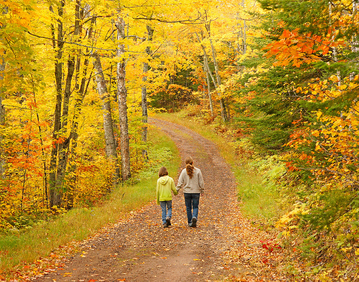 Road to Historic Tettegouche Camp 001<br /> <br /> Some of the brilliant colors of the maples and oaks along the Superior highlands were still showing this last week.  I got a chance to accompany Jenny and Kate Walsberg on a mother daughter outdoor adventure into the historic Tettegouche Camp located in Tettegouche State Park.