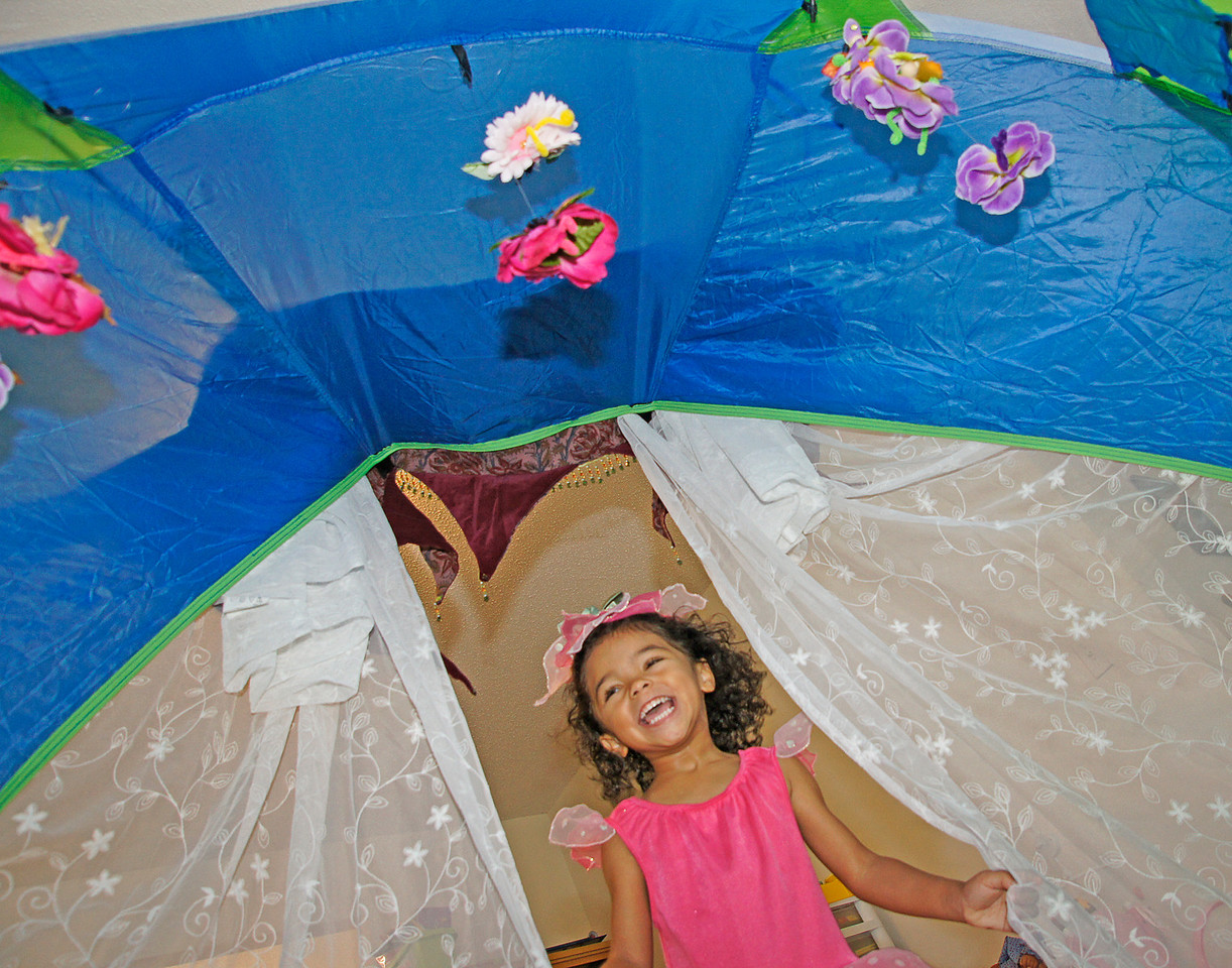 Birthday Party<br /> <br /> Karla and I spent last week in Atlanta visiting our daughter and granddaughter. It was Addie's fourth birthday so Rebecca gave her a fairy themed birthday party. This was the tent with some of the flying fairies that Rebecca made for the party. Addie was pretty excited when 30 people attended her party.