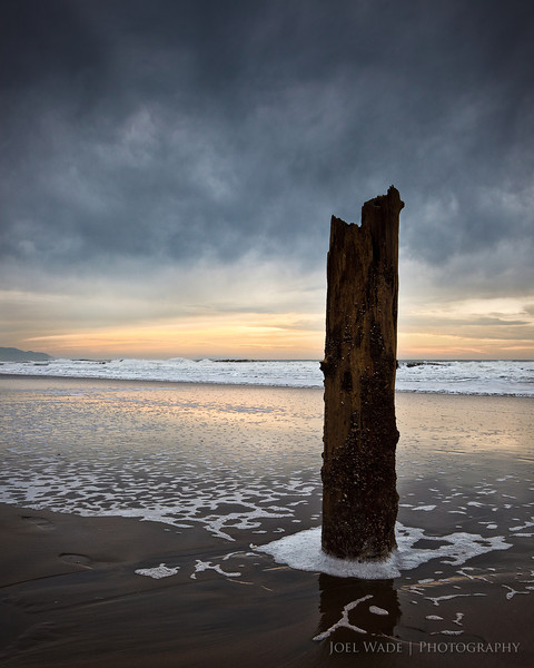 Still Standing<br /> <br /> Fall and cool weather seems to have finally arrived in Northern California this week.  Shot this on the San Francisco coast last autumn on one of those cool afternoons where the sun never quite made it through the clouds.<br /> <br /> ISO 320, 28mm, f10, 1/200 second exposure.
