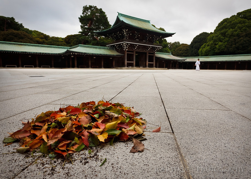 Meiji Shrine – Tokyo<br /> <br /> Seeing the devastation in Japan is heart wrenching- and I've been thinking a lot about friends and colleagues over there.  If any good can come from this for us observers-from-afar, I think it's to remember not to sweat the small stuff too much- life is simply too short.  Here's the side of Japan I love the most- quiet, orderly, and beautiful- the Meiji Shrine just after dawn.  Jetlagged, I walked through the city very early in the morning, and explored the beautiful landscapes and gardens of the shrine essentially to myself.  For this shot I rested my elbows on the concrete, and was rewarded for waiting a few moments by having the monk walk by in the background.<br /> <br />  ISO 640, 21mm, f/10, 1/320 second exposure.