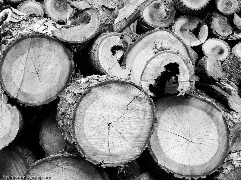June 19 2008 <br /> <br /> Carbon footprint <br /> <br /> Found this stack of pieces of wood outside a home in our neighbourhood - looks like it was for sale. Thought it made for an interesting b/w shot what with all the shapes, textures etc.