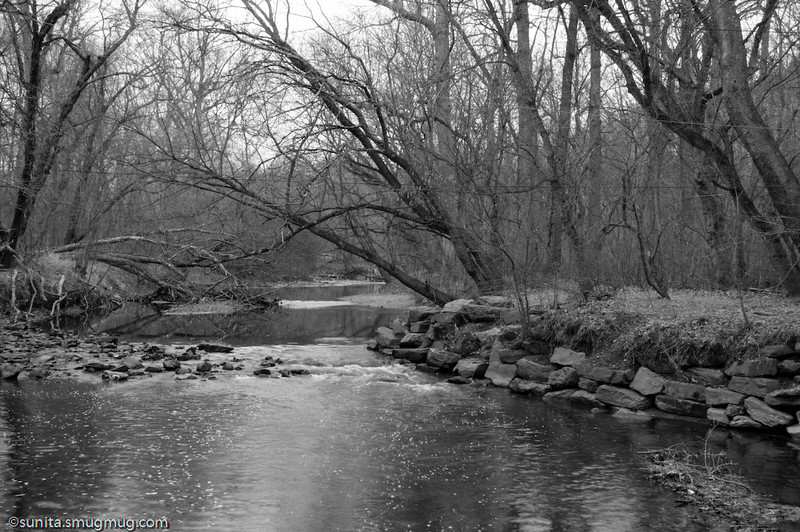 Dec. 22 <br /> <br /> Rock Creek