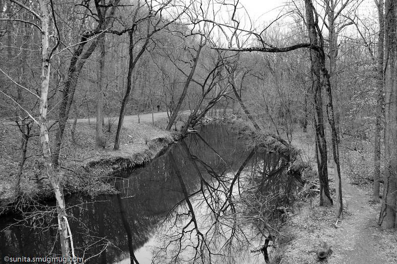 Dec. 17 <br /> <br /> Reflections