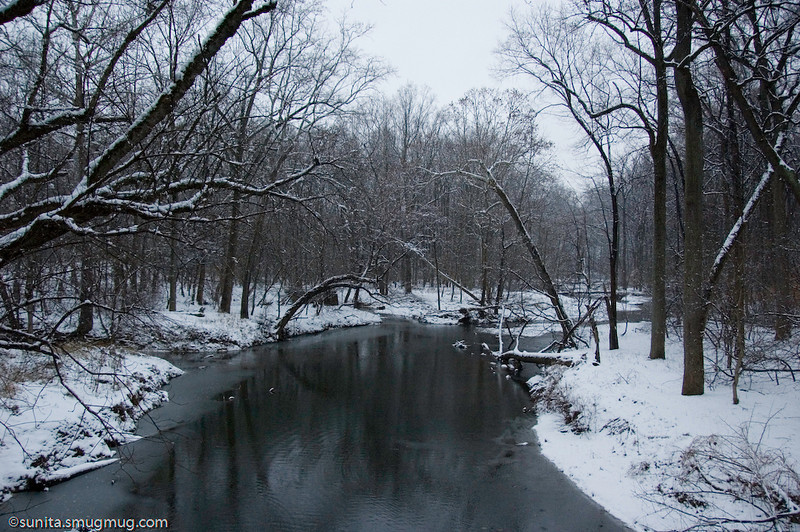 Jan. 17<br /> <br /> My favorite creek <br /> <br /> Sometimes (just sometimes) I wish the trees would align themselves more prettily along the creek...