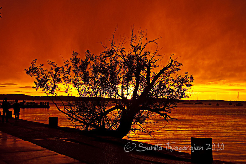 Sunset storm over lake Monona, WI. Never have I seen such surreal colors.