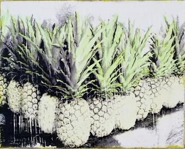 Pineapple Angle