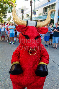 2015 Running of the Bulls