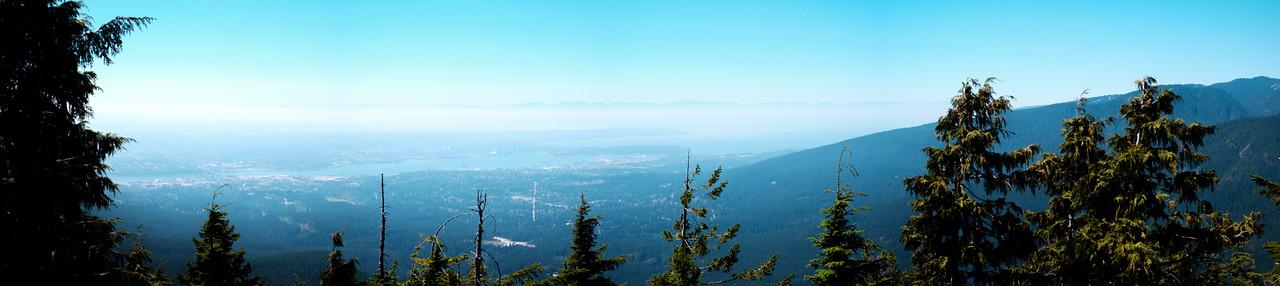 dog mountain panorama