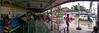 Cebu Ferries Panorama