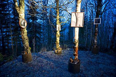 Tom Sandbergs bildet av trær på trær, Blindeforbundets Sansesti på Hurdal syn og mestringssenter -- by Dhita Siauw