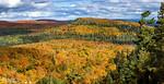 Oberg Mountain Maples III