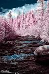 Poplar River Rapids - Infrared