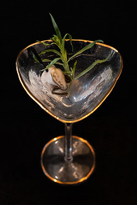 """Oyster Martini"" cocktail"