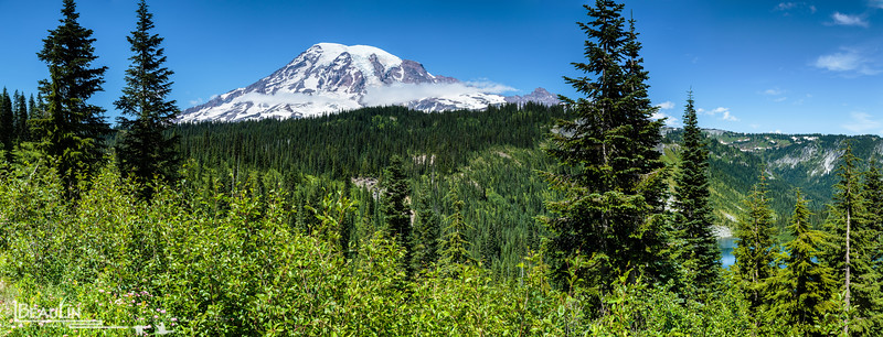 Rainier from Stevens Canyon