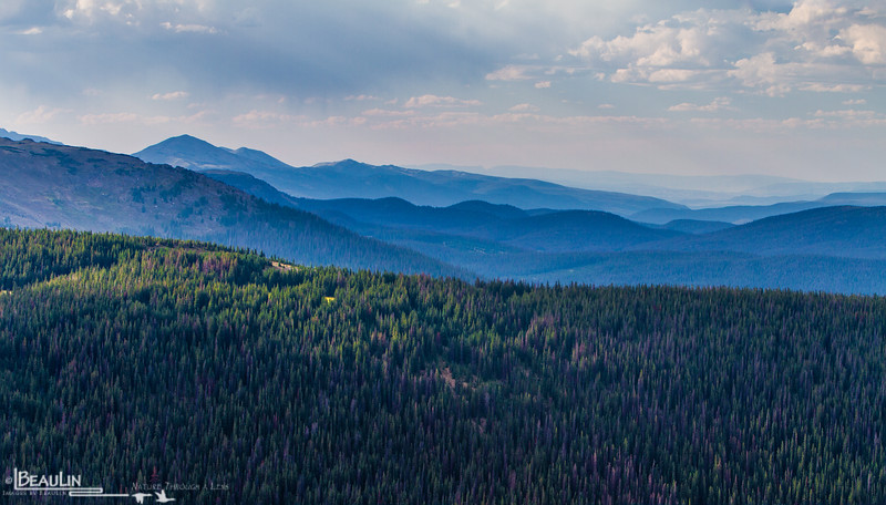 Rocky Mountain Blue<br /> Late-afternoon haze over the Never Summer Subrange of Colorado's Northern Front Range, viewing from the Ute Trail in Rocky Mountain National Park.