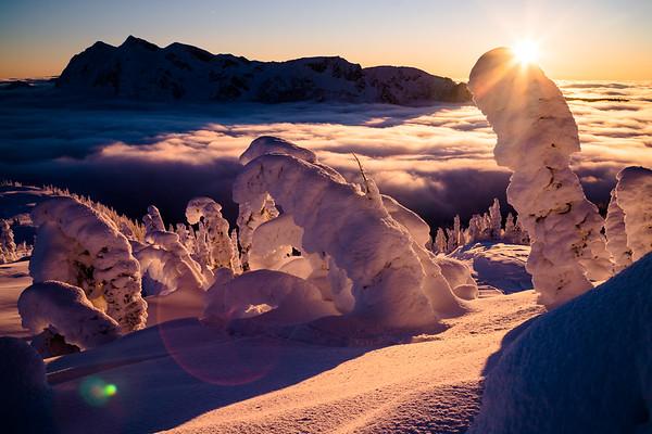 mustang powder sunset