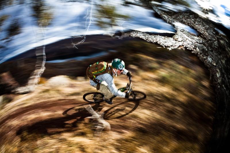 rider: Neil Provo