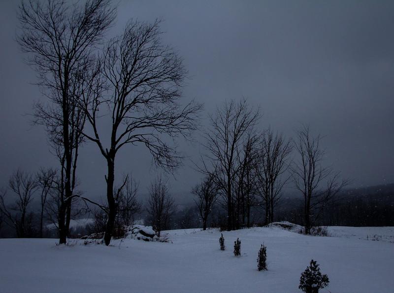 Evening Snow