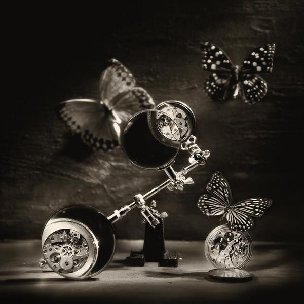 Бабочки и механизмы