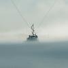 Deck high Fog