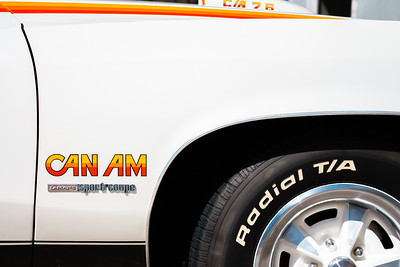 can_am_fender