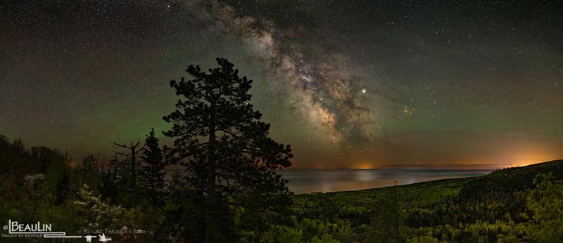 Highlands Pine Night Vista