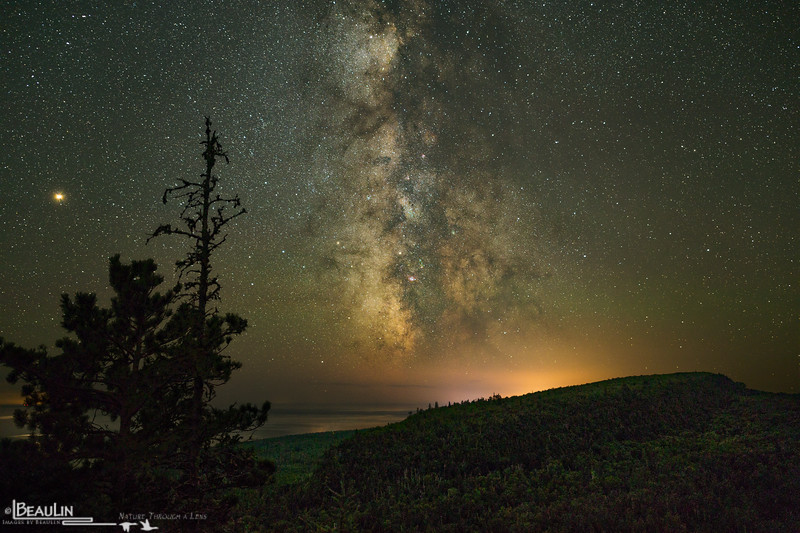 Leveaux Mountain Starlight