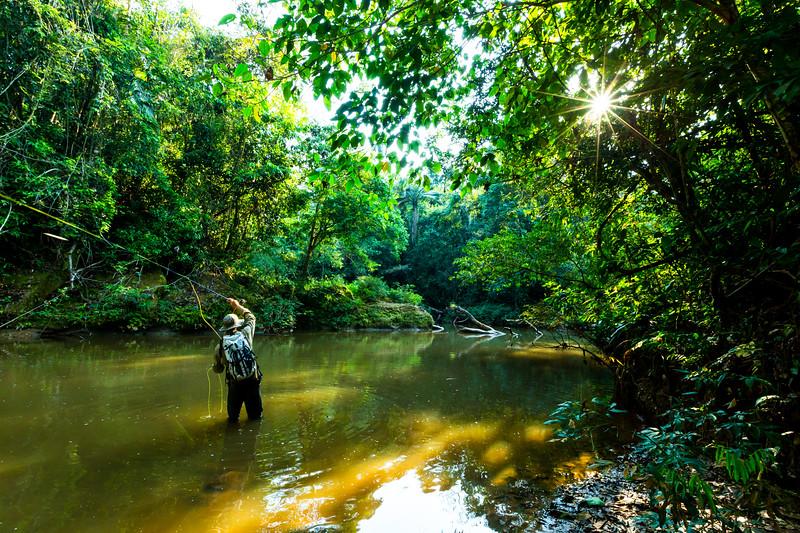 Agua Verde tributary