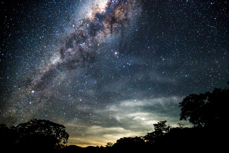 Jungle Milky Way