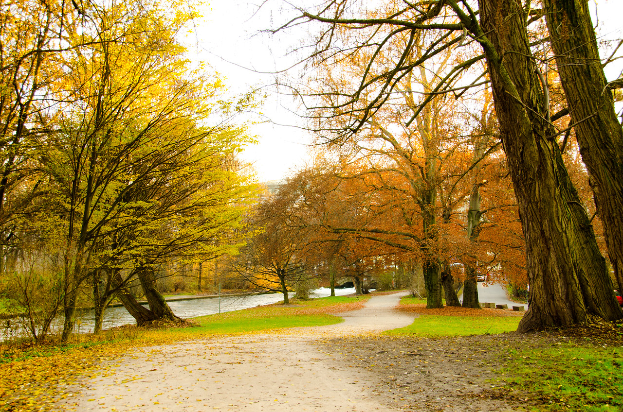 The last day of autumn in Munich
