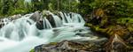 Paradise Creek Deluge II