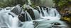 Paradise Creek Deluge