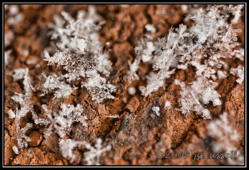 Snow on brick