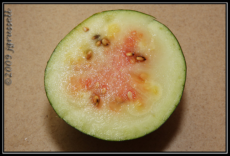 NOT ripe watermelon