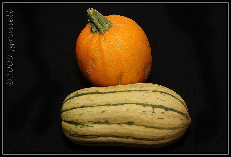 Pumpkin and delicata squash