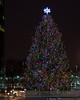 December 10 - Christmas Tree at RexCorp Plaza, Uniondale.