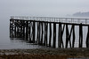 March 22 - A foggy day in Oyster Bay