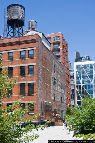 July 5 - The High Line in New York CIty.