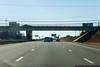 November 25 - Thanksgiving Weekend traffic, North Carolina style.