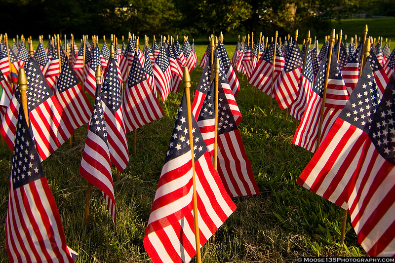 September 11 - Flags of Remembrance, September 11 tribute in Charlotte, NC.