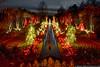 December 26 - Daniel Stowe Botanical Garden lit up for the holidays.