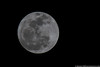 January 26 - First full moon of the new year.